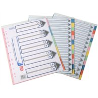 LION PAPER INDEX 20 CLRS TAB
