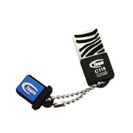 TEAM USB 2.0 USB FLASH DRIVE 32GB BLACK WHITE